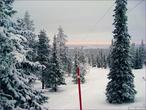 Царство снега и мороза