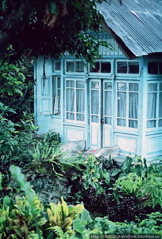 типичный домик с садом, г