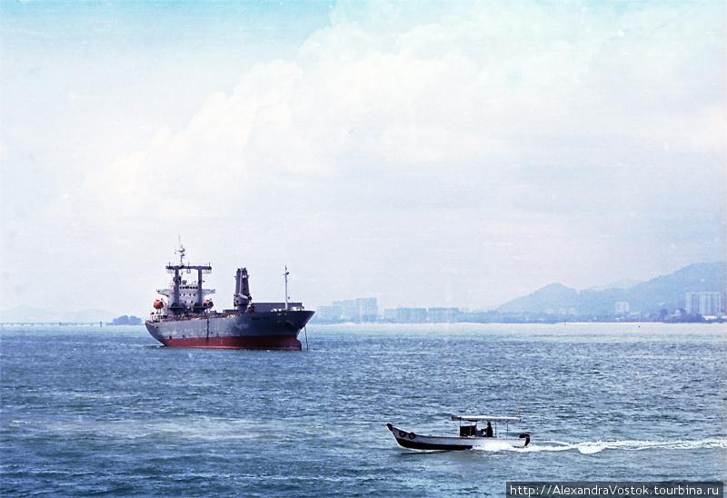 Кэмерон Хайлендс - страна с открытки Танах-Рата, Малайзия