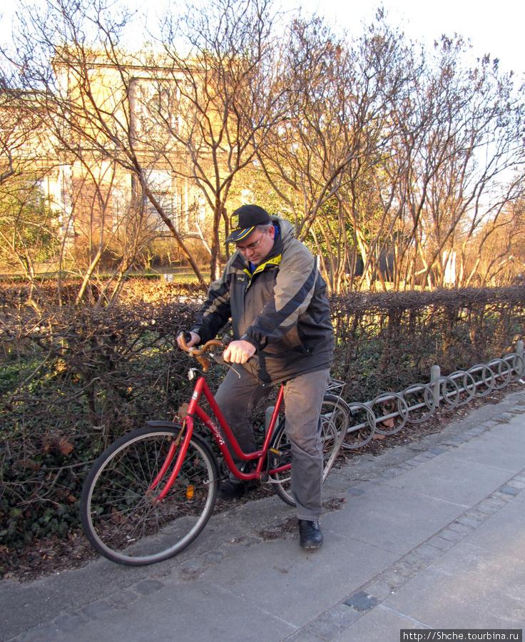 Брошенный велосипед. Похоже, кто-то потяжелее меня катался.