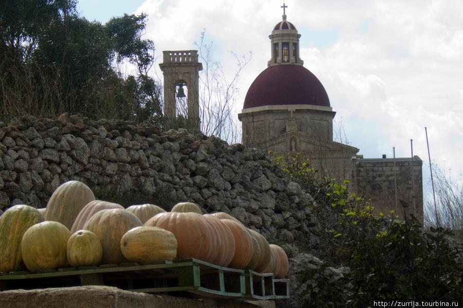 Тыквы у церкви таль-Виттория (Имтахлеб, Рабат, Мальта)