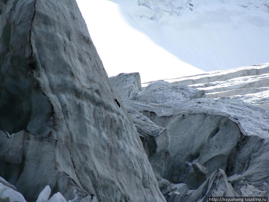 Ак-Кемский ледопад. Присмотритесь: вверх по вертикали скачет белка-каменушка. Живет в горах, любит камни, лед и высокогорье