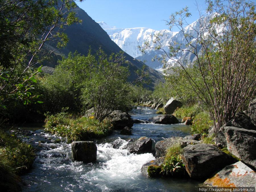 ручей у Ак-Кема, вид на Белуху и Корону Алтая