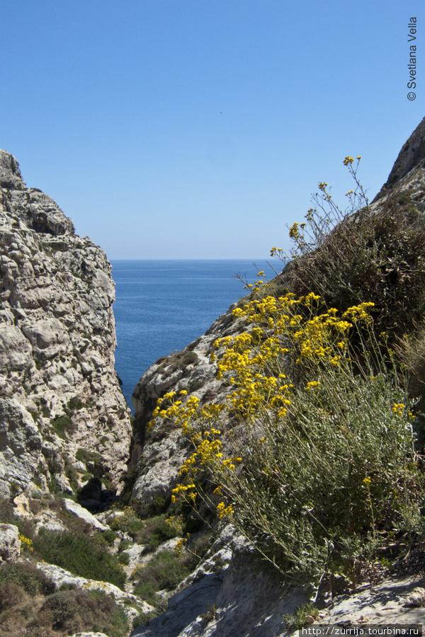 Вид Бабу (Зурри, Мальта)