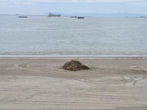 Сухогруз заходит в порт