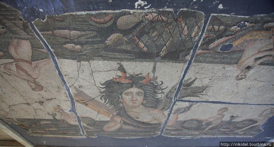 римская мозаика в музее Антакьи