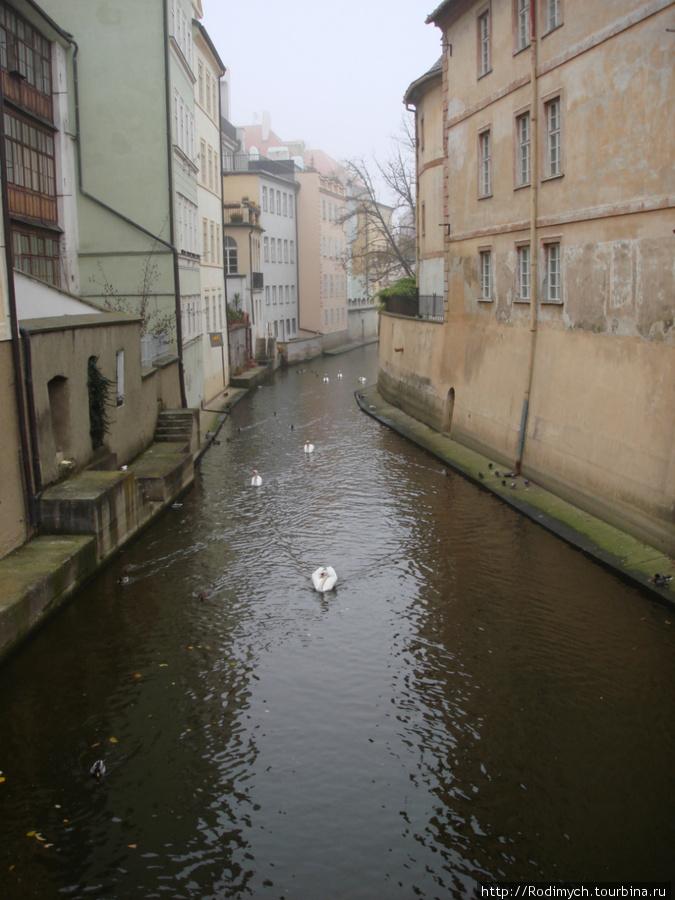 протока Чертовка