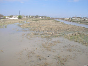 Река Кашкадарья.