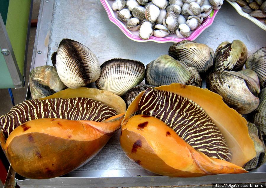 Было бы интересно узнать, как называется этот полосатый морепродукт. Может, кто знает?