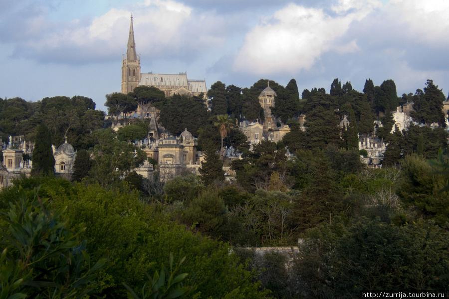 Кладбище Аддоллората (Паола, Мальта)