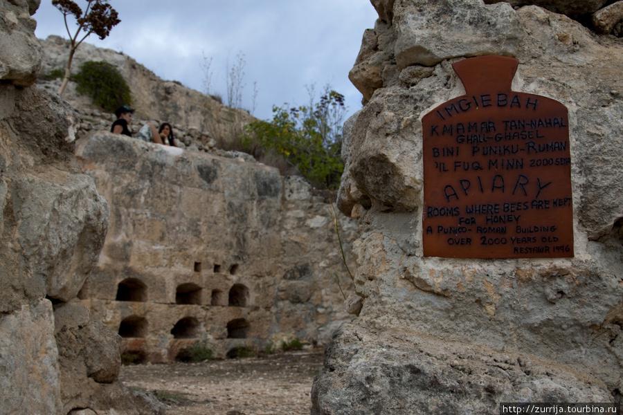 Старинная пасека (Шемшия, Сент-Полс-Бэй, Мальта)