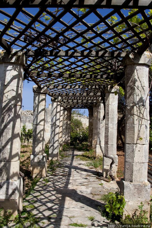Сад губернатора (Сафи, Мальта)