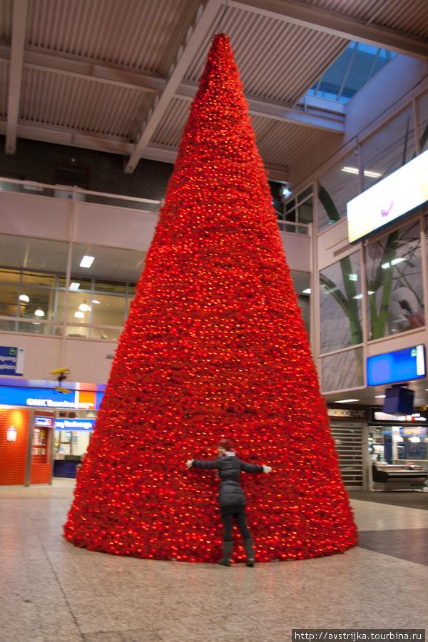 елка на вокзале Гааги