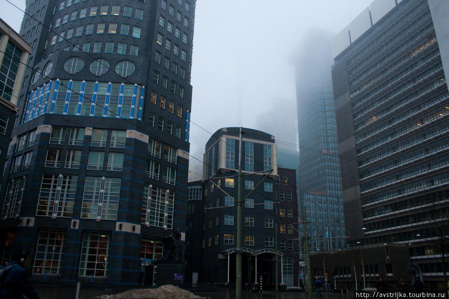 туманная Гаага