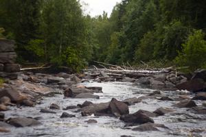 Когда река постепенно пересыхает, становится видно, что ее дно засыпано валунами , которые некогда были частью плотины.
