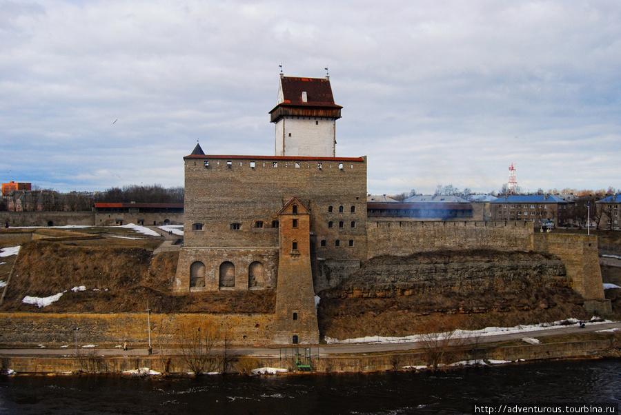 Замок Германа (Нарвская крепость)