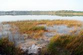 Берег озера Коба