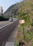 Табличка для пеших паломников (указатель на храм номер 24 и призыв соблюдать осторожность на дороге)