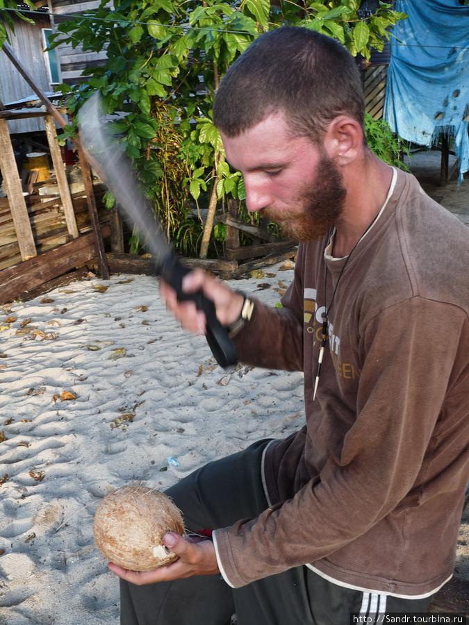Гость и кокос