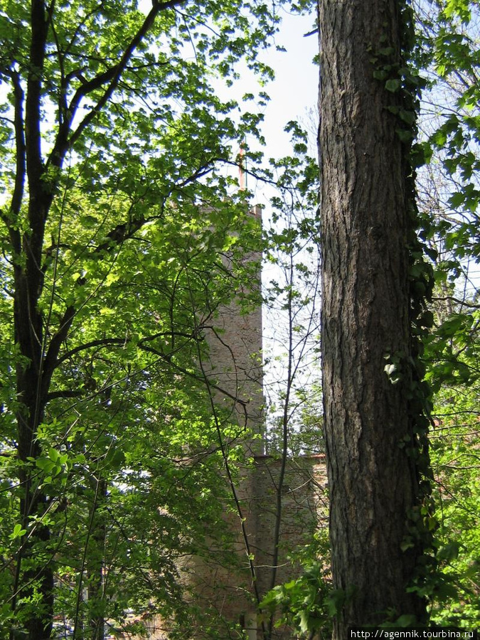 Крепостные стены и башня окружены парком