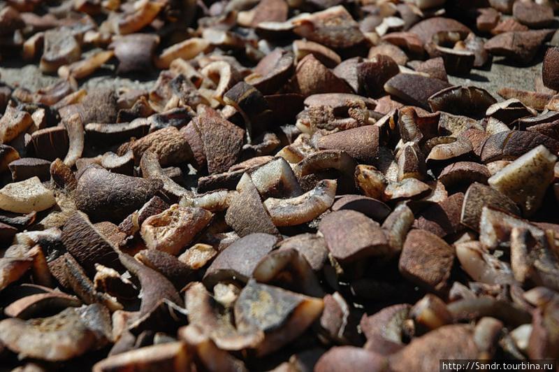 Копра — сушёная мякоть кокоса
