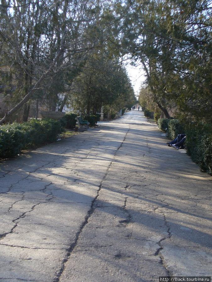 Дорожки парка – асфальт и плитка потрескались