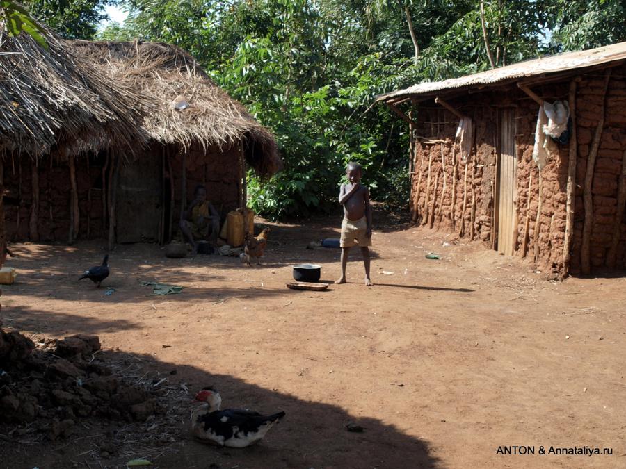 Деревня багишу. Справа жилой дом
