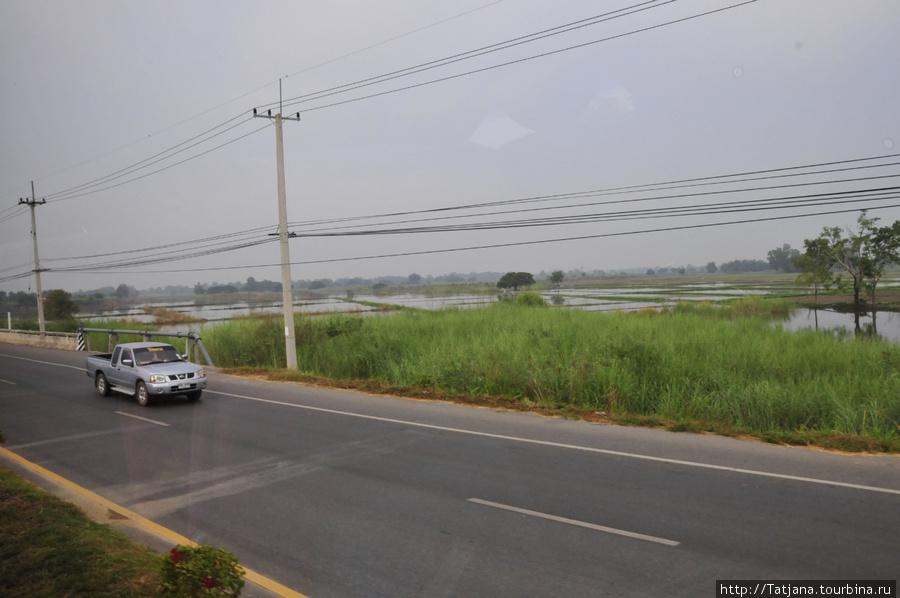 Рисовые поля вдали