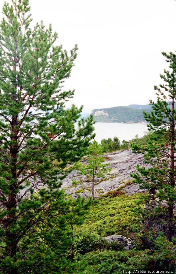 Природа севера Норвегии Скиботн, Норвегия