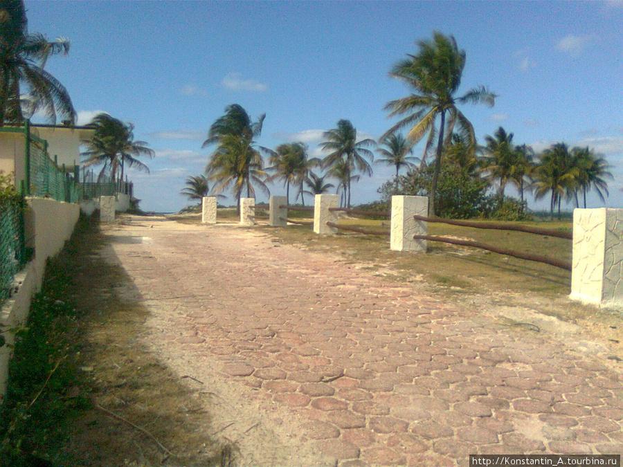 возле мотеля «Punta Blanca»-2