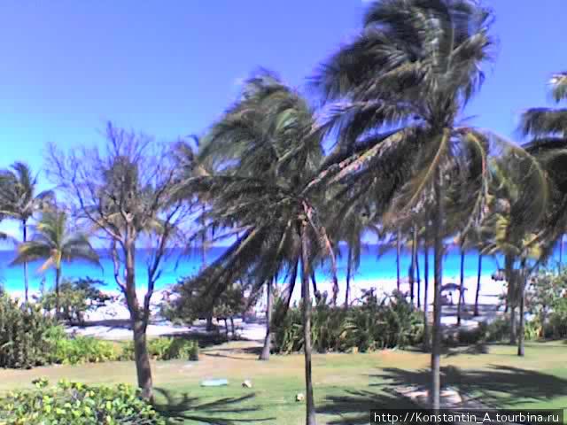 Местность отеля «Puntarena»-4