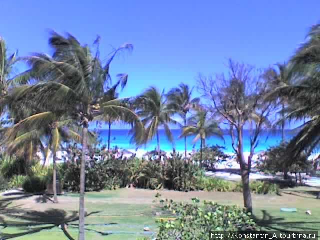 Местность отеля «Puntarena»-3