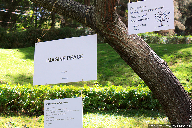 Дерево желаний от Йоко Он