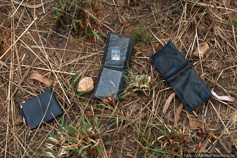 Вблизи туристической тропы находим кучу выпотрошенных бумажников. Турист не зевай!