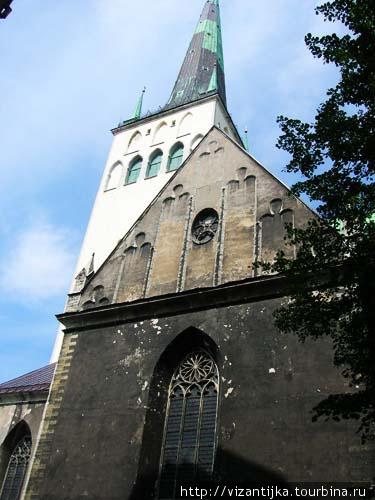 Таллинн. Церковь Олевисте