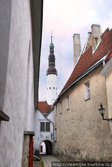 Таллинн. Башня церкви Свя