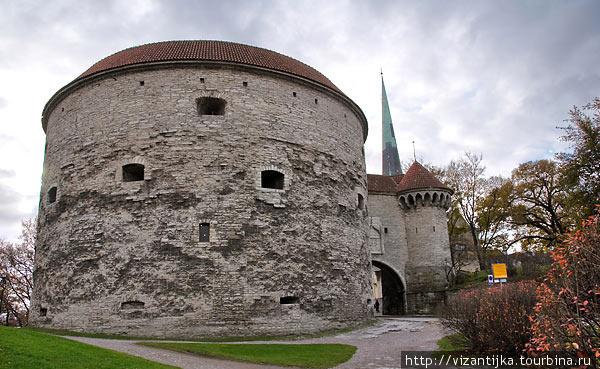 Таллинн. Башня Толстая Ма