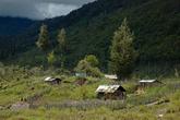 Дома в деревне деревянные и огорожены от соседей забором из кольев. Все чаще стали встречаться металлические крыши.