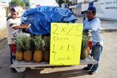 Торговцы ананасами