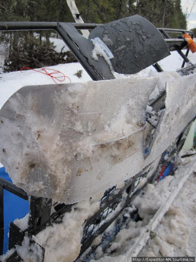 Наша лыжа