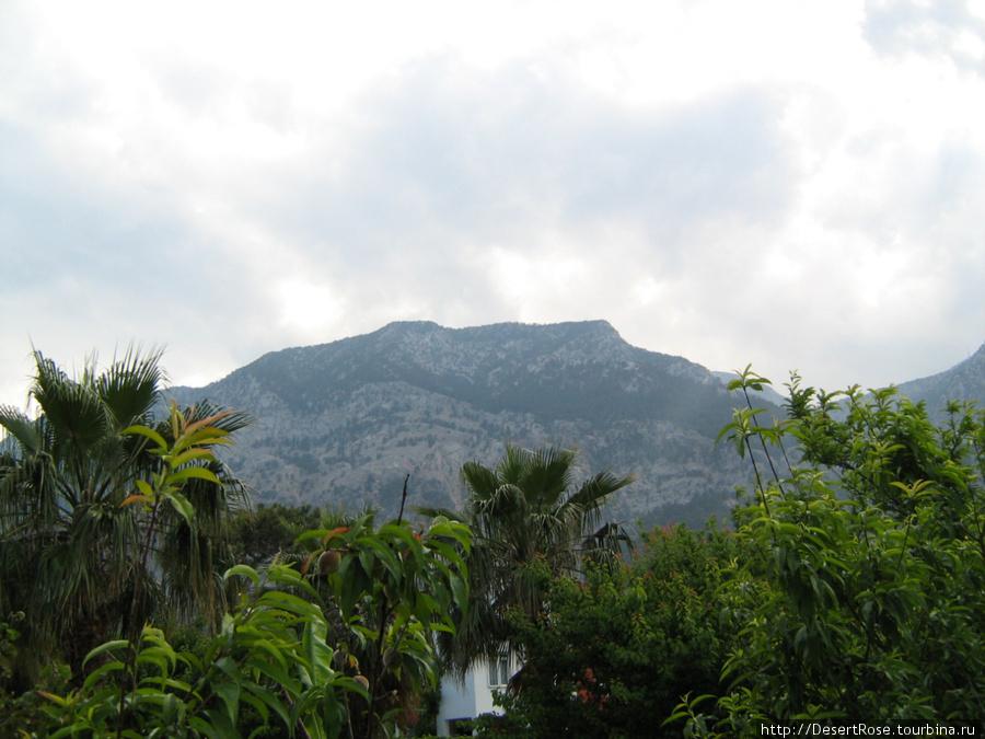 люблю горы