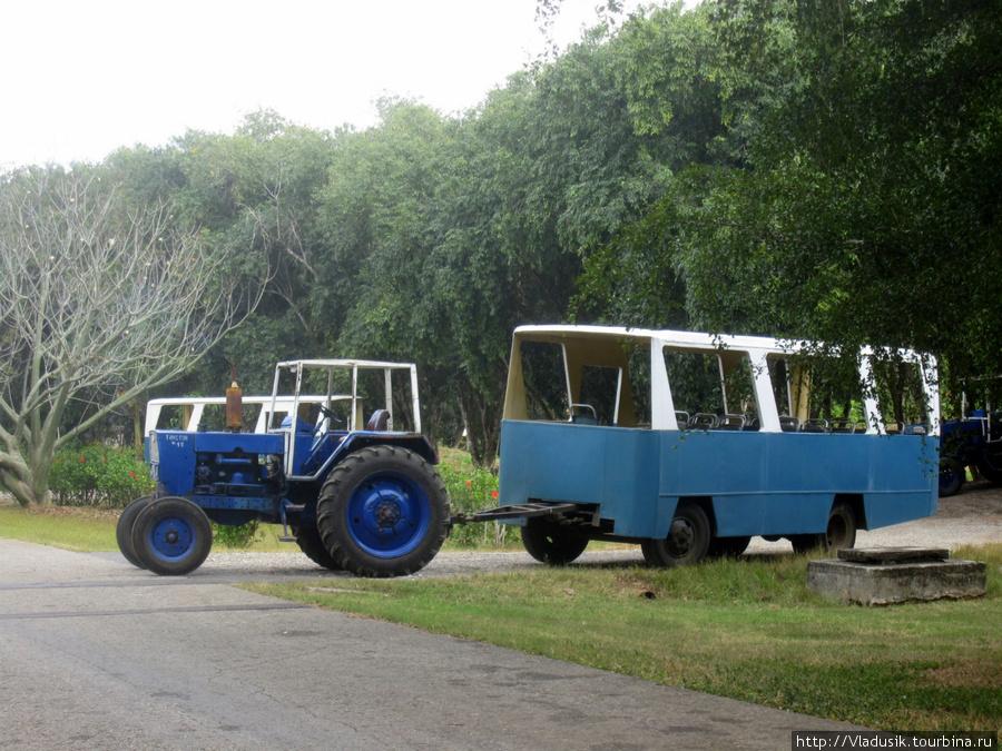 Наш чудо-транспорт
