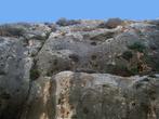 На одну из скал, возвышающихся над городом, можно забраться
