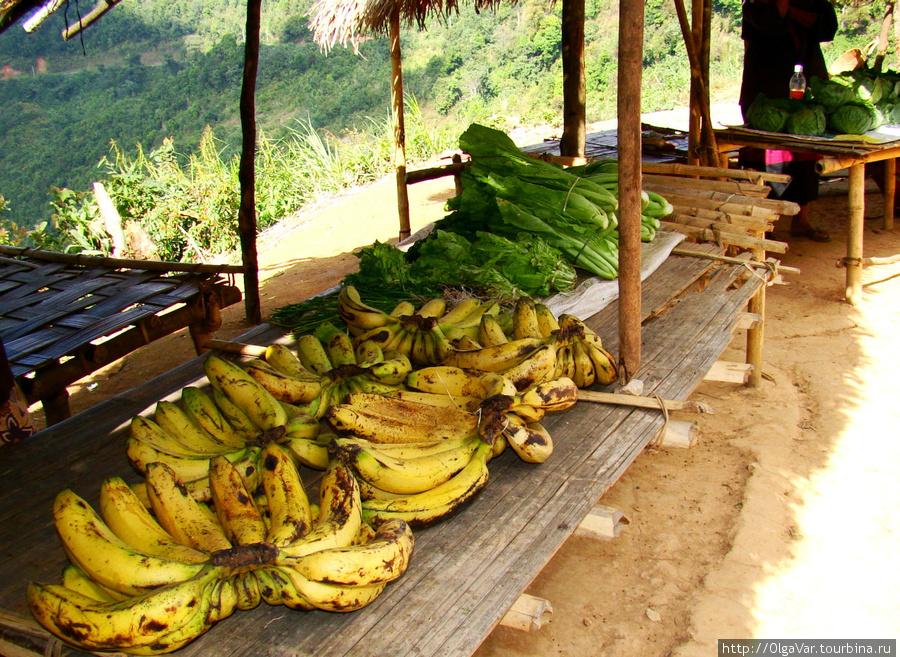 Но свой выбор мы остановили на знакомых бананах