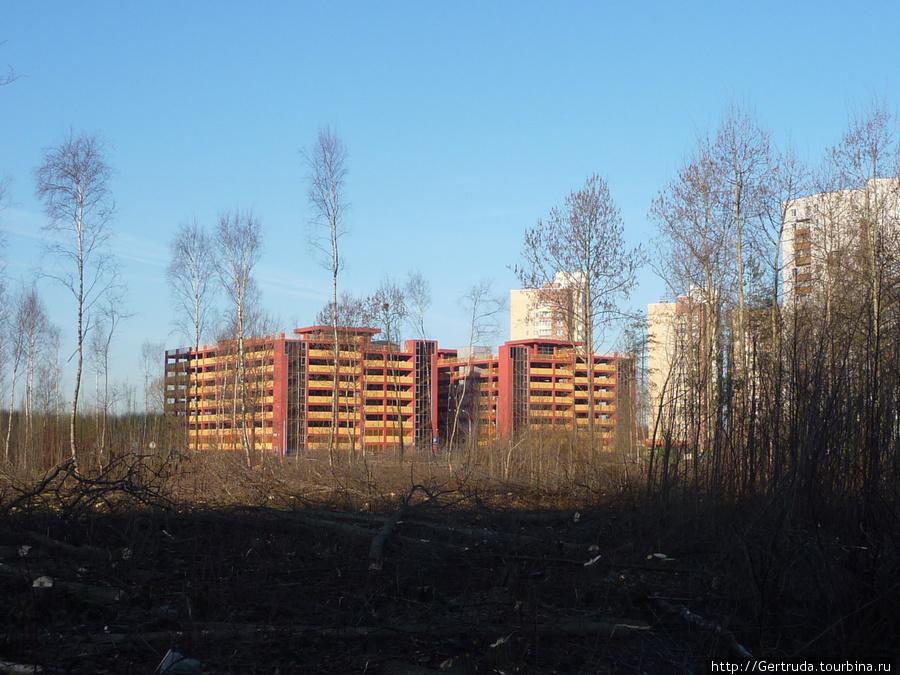 Новые многоэтажные паркинги на улице Бадаева.
