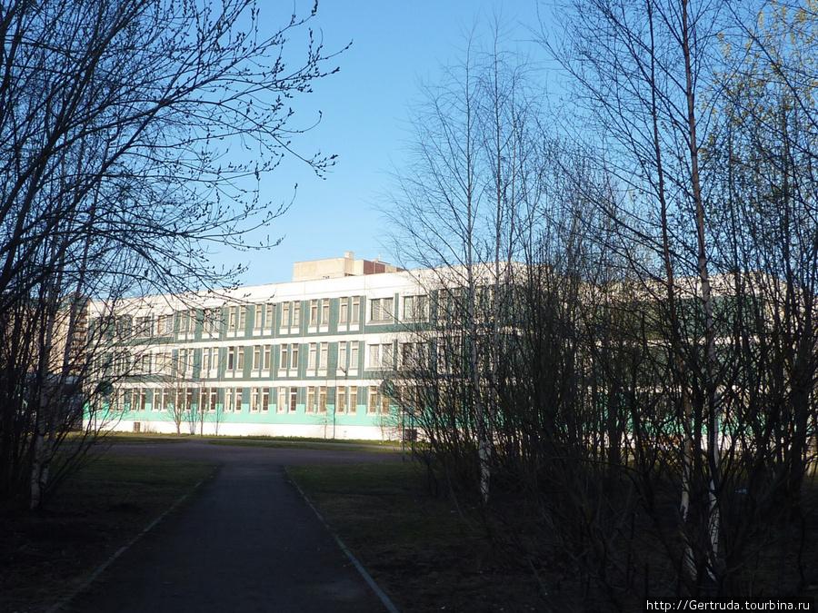 Одна из школ на улице Джона Рида.