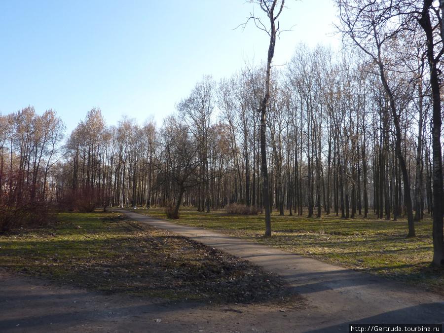Небольшой парк Есенина на проспекте Большевиков.