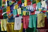 Еще молитвенные флажки. На них написана молитва, и считается, что когда ветер растрепывает их, молитва возносится в небо...  Красив буддизм!
