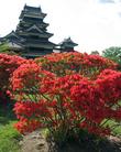 Крепость в Матцумото