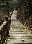 На лестнице- подсветка для вечерних прогулок. Летом, по  теплым деревянным досточкам , можно идти босиком.